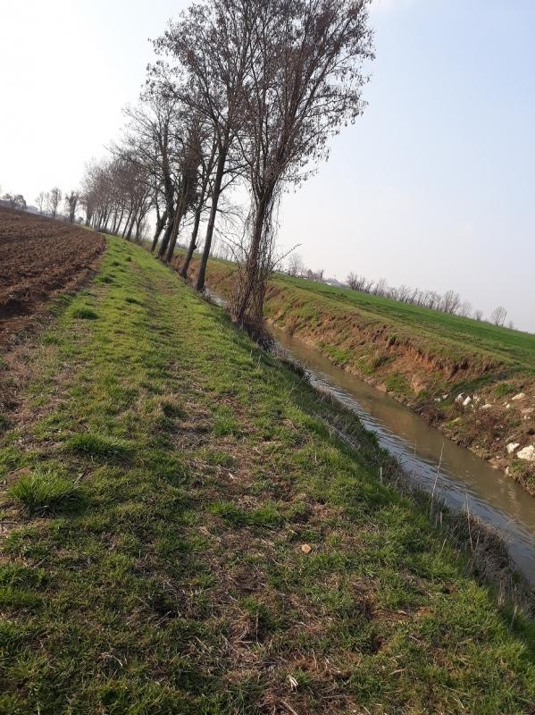 Acqua a Rivalta-13