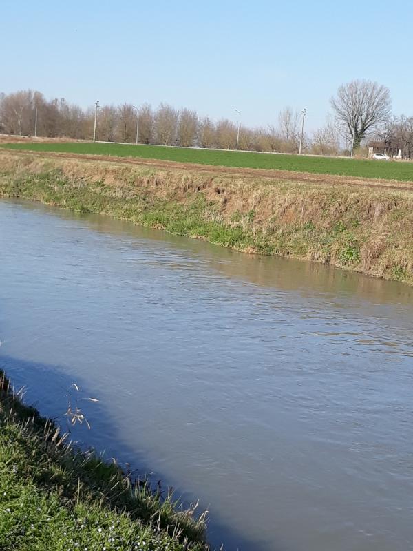 Acqua a Rivalta-5