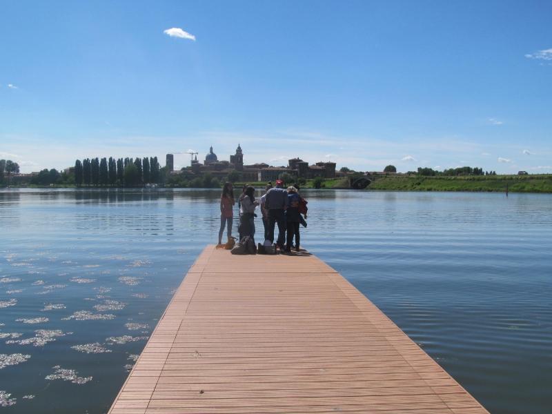Laghi di Mantova-1