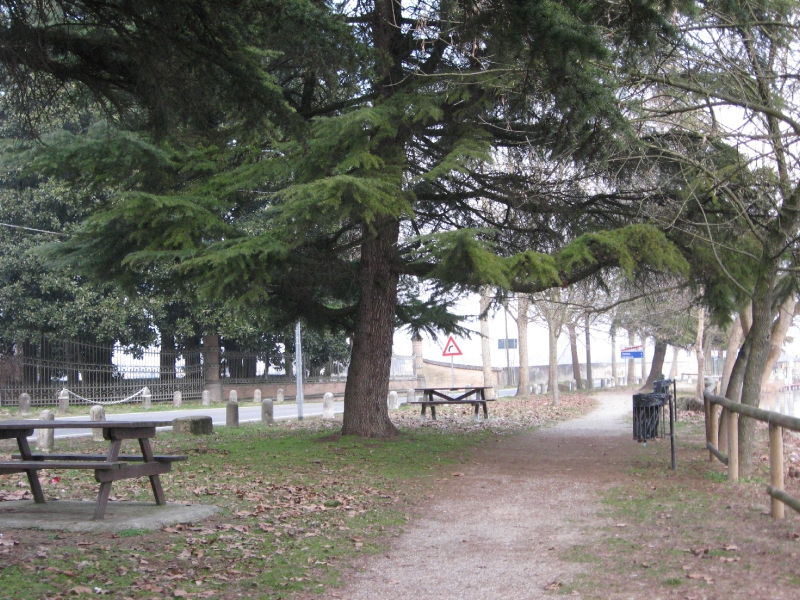 Passeggiata Mincio a Goito (MN)-4