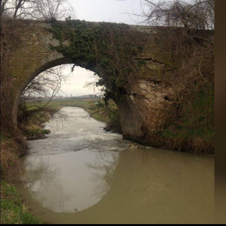 Acqua a Rivalta-11
